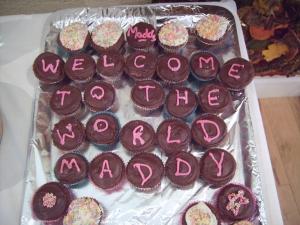 Maddy's bunfight